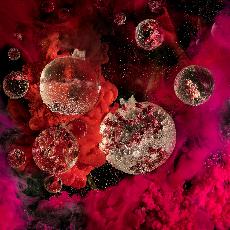 Underground Wonderland